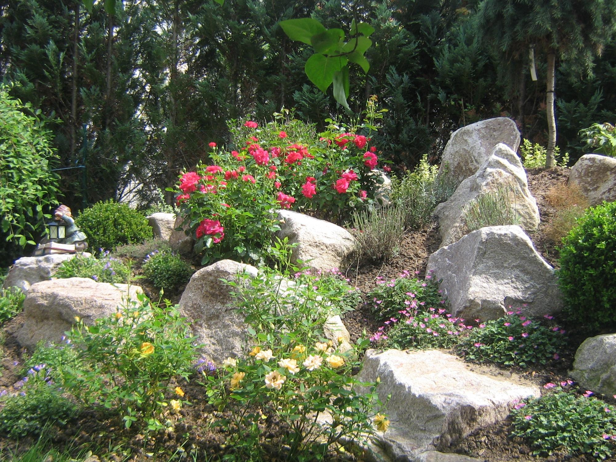Luxus Kiesgarten Pflanzen Design